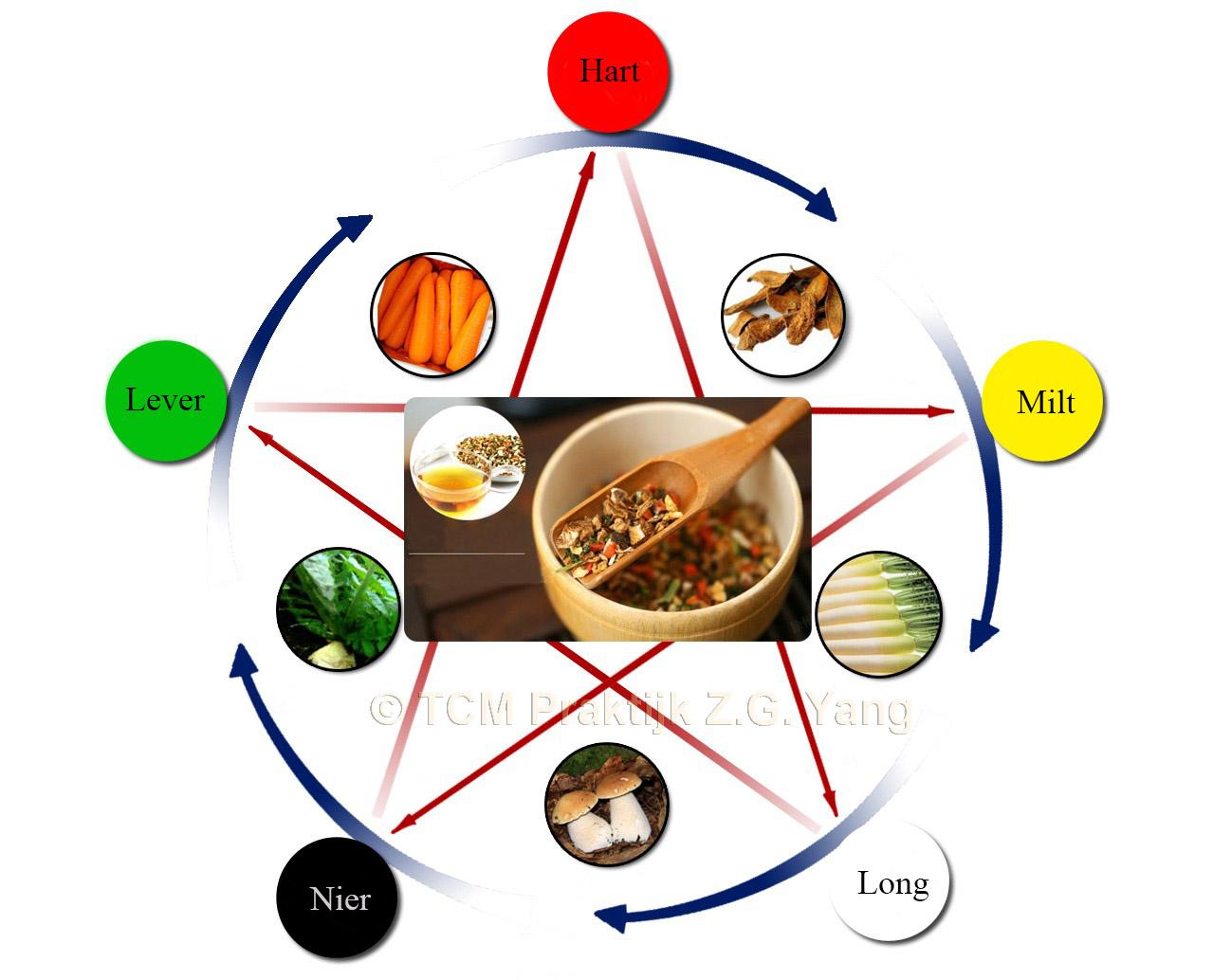 chinese voedingsleer 5 elementen