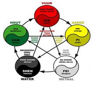 5 elementen en Zang-fu Energie cycli