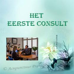Het eerste consult